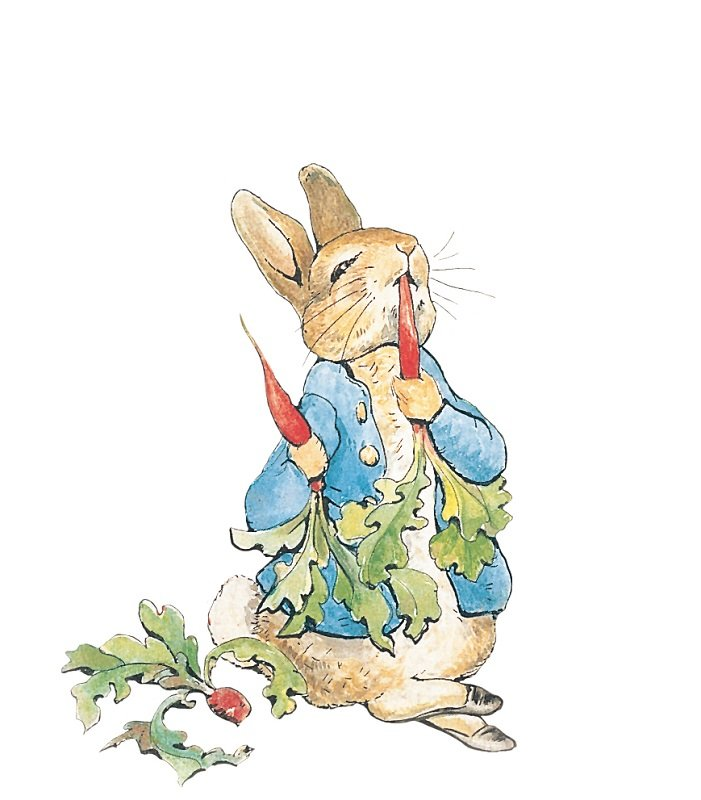 The Tale of Peter Rabbit 1902 PR9 C/O PR & RADISHES 7.6.9