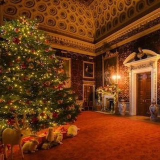 Christmas tree in stately home room, red carpet, presents under the tree portraits on the wall