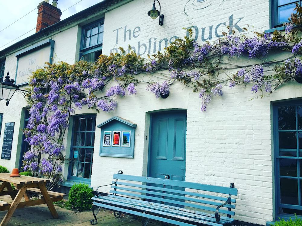 white washed pub with purple wisteria and blue iron bench
