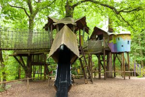 wooden adventure tree house