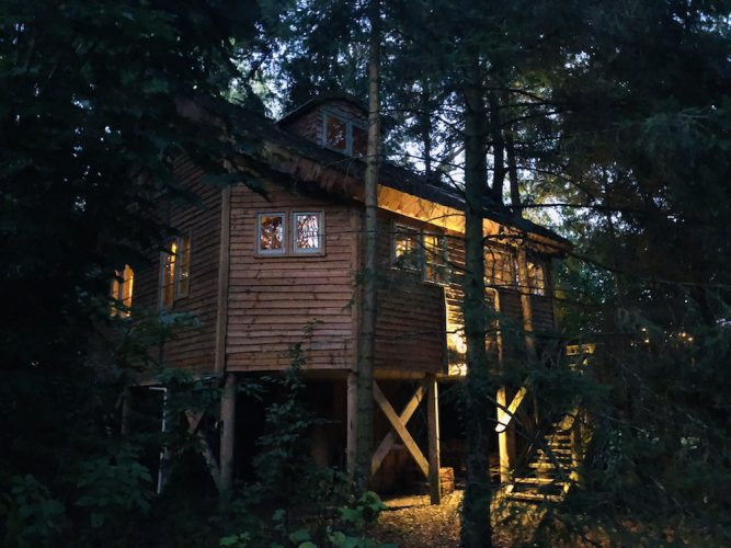 wooden tree house surrounded by trees