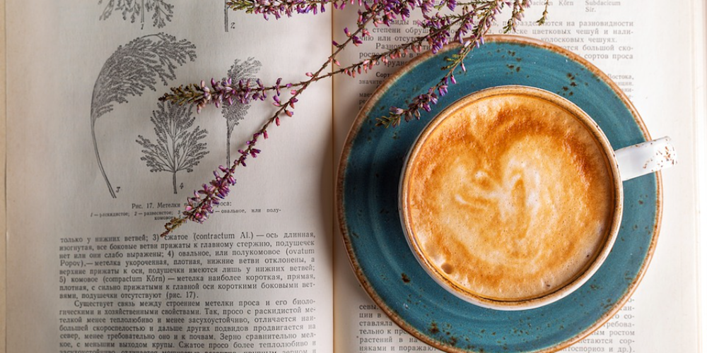 coffee cup on a open book with sprig of herbs